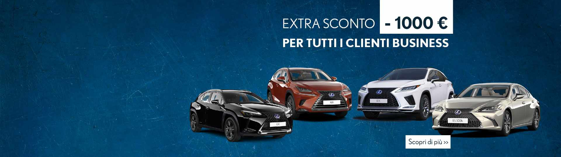Sconto-Lexus-Business-min.jpg